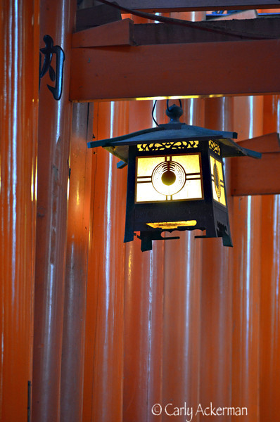 Dusk at Fushimi Inari