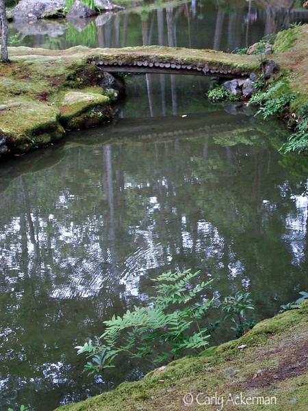 Saiho-ji on a Rainy Day