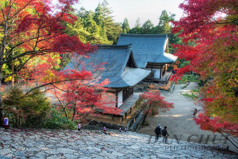 Jingo-ji Autumn
