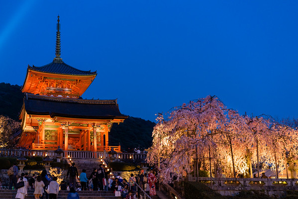 Kyomizu Temple at Night