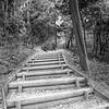 near Arashiyama Bamboo Forest