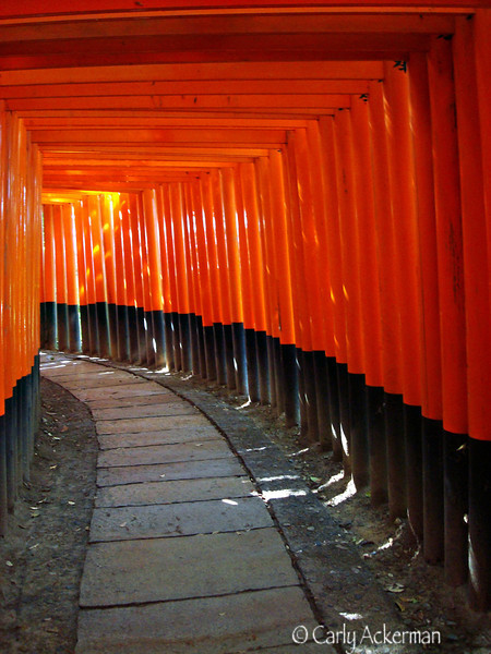 A Walk Through Fushimi Inari