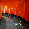 A Walk Through Fushimi Inari