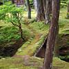 The Moss Garden at Saiho-ji