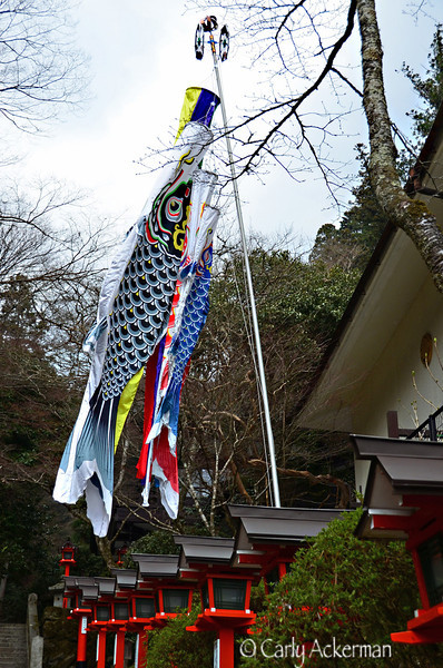 Koinobori at Kurama-dera