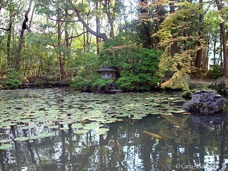 The Pond at Tenjyuan