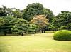 Gardens, II, Palace of the Shogun, Kyoto, Japan