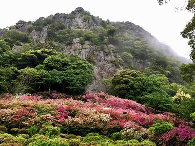Mifuneyama Rakuen 御船山楽園