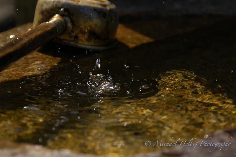 Purification Water - Miyajima