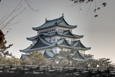 Originally built in 1612 by the order of Tokugawa Ieyasu and suffering major destruction during World War II, Nagoya Castle was reconstructed in 1959.