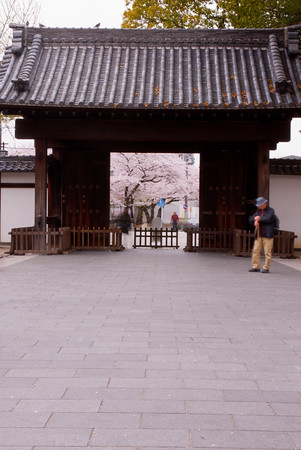 The main Black Gate (Kuro-mon) that leads into the Ōzone Shimoyashiki where the garden is located.  KUROMON is a 5.4m wide wooden gate with a gable roof. It is a relic from the Owari Tokugawa family residence built in 1900(Year 33 of the Meiji period).  Along with the continuing tenement house and the fences, it is one of the few remains that escaped the fires of massed air raids of 1945(Year 20 of the Showa period). It is a valuable structure which reflects typical architecture of old samurai residences.