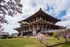 Nara Park and Tōdai-ji Temple with blooming cherry trees, Nara Prefecture, Honshu Island, Japan.