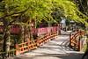 A part of the Kasuga-Taisha Temple complex in Nara Park, Nara, Nara Prefecture, Honshu Island, Japan.
