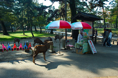 cookie stand in Nara park