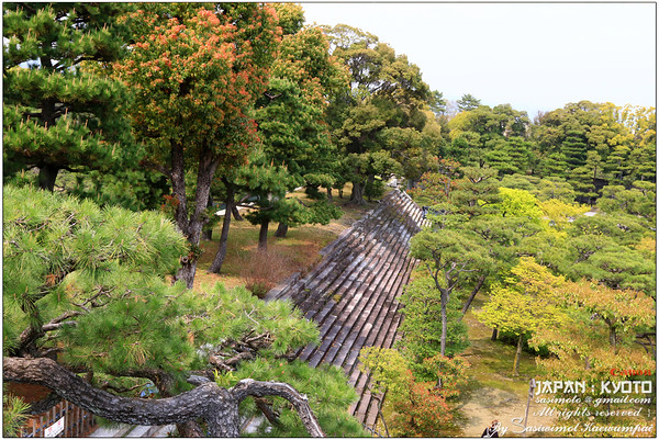 Honmaru garden and view of stairways located on the southwest corner of the inner moat.