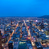 Sapporo Overlook - South