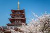 Pagoda buildings at the Sensoji Temple in Osaka, Japan, Asia.