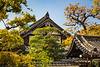 Japanese architecture and vegetation at the Sensoji Temple in Osaka, Japan, Asia.