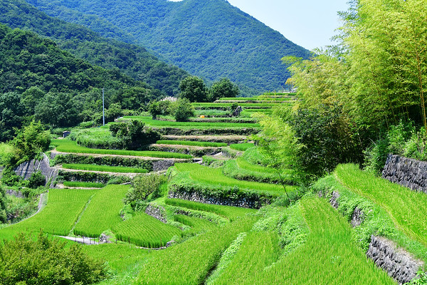 Shodoshima impressie