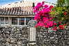 Buildings, flowers  and stone fences on Taketomi Island, Okinawa Prefecture, Japan.