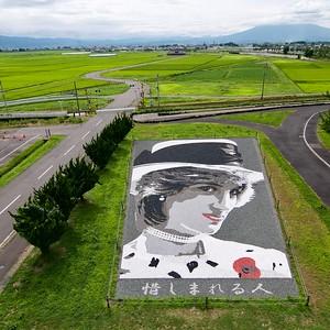 Pebble art of Princess Diana, Inakadate Village