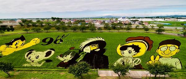 Tanbo Art #2, Inakadate Village