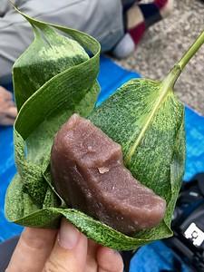 笹餅 Sasamochi Aomori style