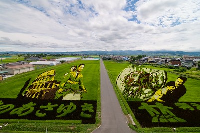Rice Paddy Art 田んぼアート #1, Inakadate Village 田舎館村