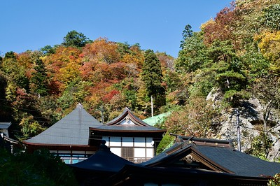 Beautiful fall foliages atop the temple