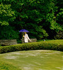 Woman in the Trees, Garden of the Emperor's Palace, Tokyo, Japan