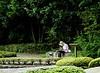 Painter, II, Garden of the Emperor's Palace, Tokyo, Japan