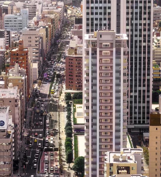 View of Tokyo, I, 9th Floor of Tokyo Tower, Tokyo, Japan