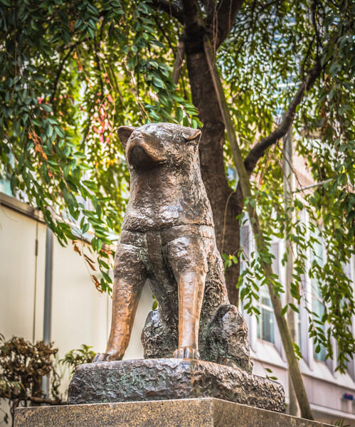 Hachiko at Shibuya JR - © 2012 Brian Neal