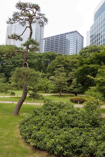 Duck hunting garden used by shogunate