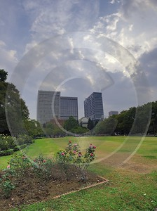 Hibiya Park Tokyo City Down Town Capital What Is Fine Art Photography Landscape Photography Order - 016445 - 17-10-2008 - 4433x5935 Pixel