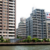 Along the Sumida River