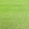 I like green :-)