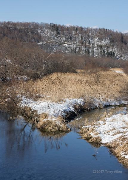 Winter ecosystem