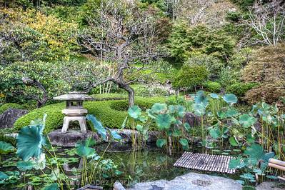 Koi pond at Hasedera Temple in Kamakura, Japan.