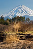 Mount Fuji (#0590)