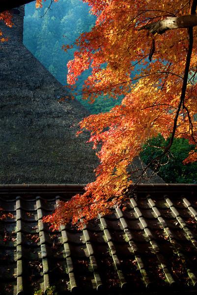 Japan2012_ 1470