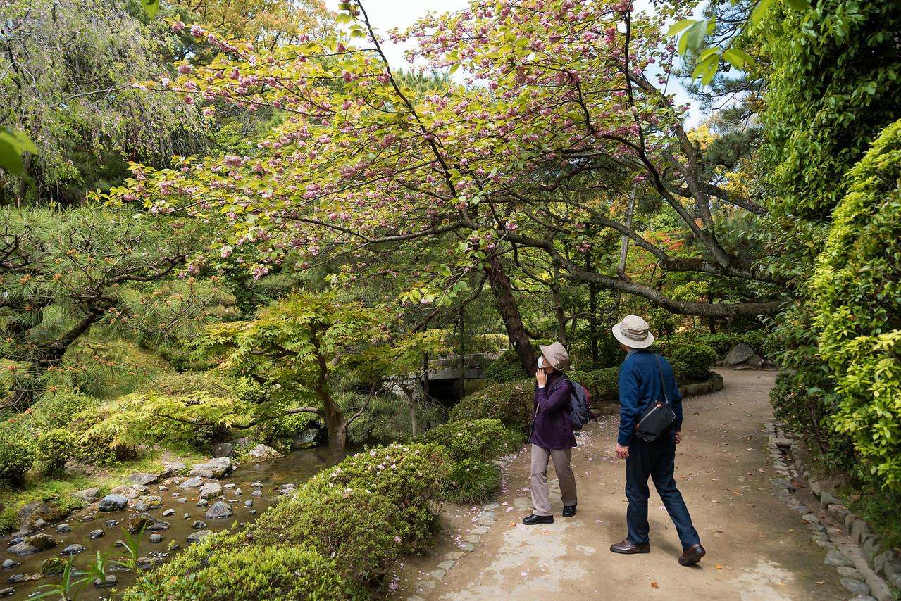Gardens of Heian Shrine, Kyoto