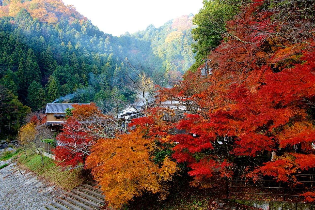Japan2012_ 1464