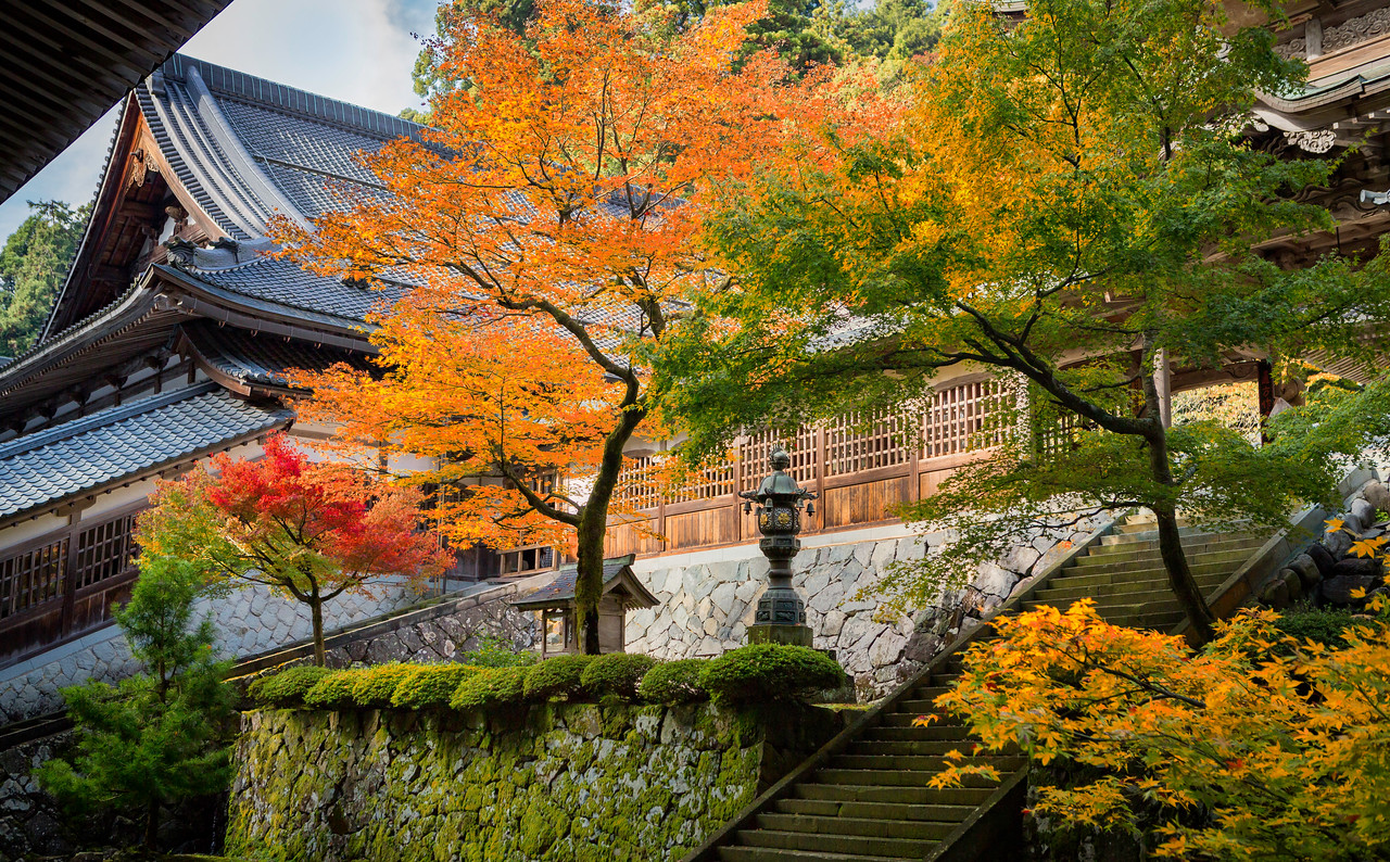 Autumn Colors at the Eiheiji Temple.