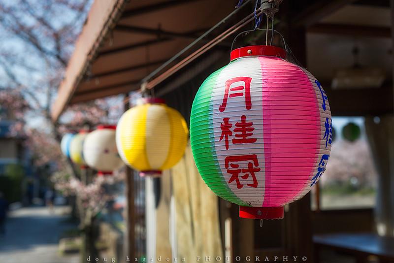 Tea House Lanterns (#0597)