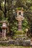 In the Garden - Copyright 2017 Steve Leimberg - UnSeenImages Com _DSF2591
