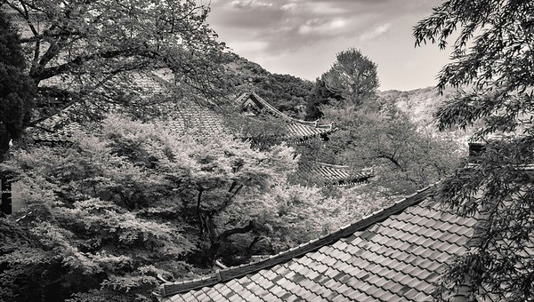 Hasedera Temple. Roofs.
