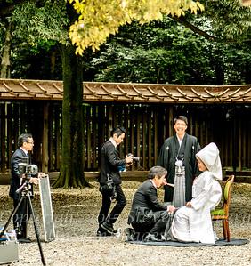 Japanese Wedding - Copyright 2017 Steve Leimberg  UnSeenImages Com _DSC1907