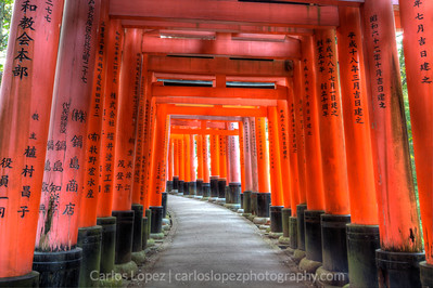 Tori gates at the Fushimi-inari temple in Kyoto, Japan.
