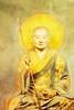 Budda Painting -  Copyright 2017 Steve Leimberg UnSeenImages Com _DSC3036